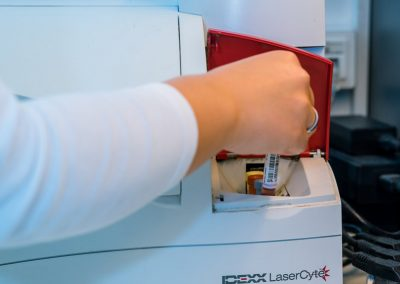 Labor-Blutanalyse